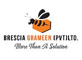 Accounts Assistant - Brescia Grameen (Pvt) Ltd