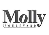 Sales Assistant - Molly Boulevard (Pvt) Ltd