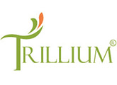 Doctor, Chef, Front Officer, Matron, Attendant, Housekeeper - Trillium Hotel