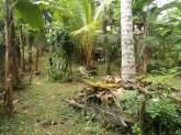 Land for sale Kithulampitiya, maruads.lk